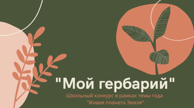 «Мой гербарий»